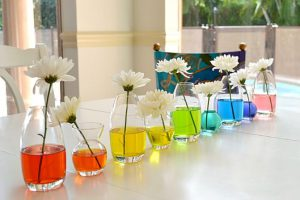 5 do it yourself spring projects for the whole family durham farms 4 rainbow flower vases solutioingenieria Images
